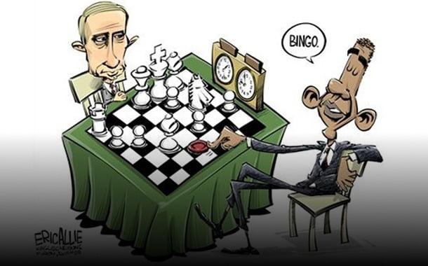 Taube schach spielen